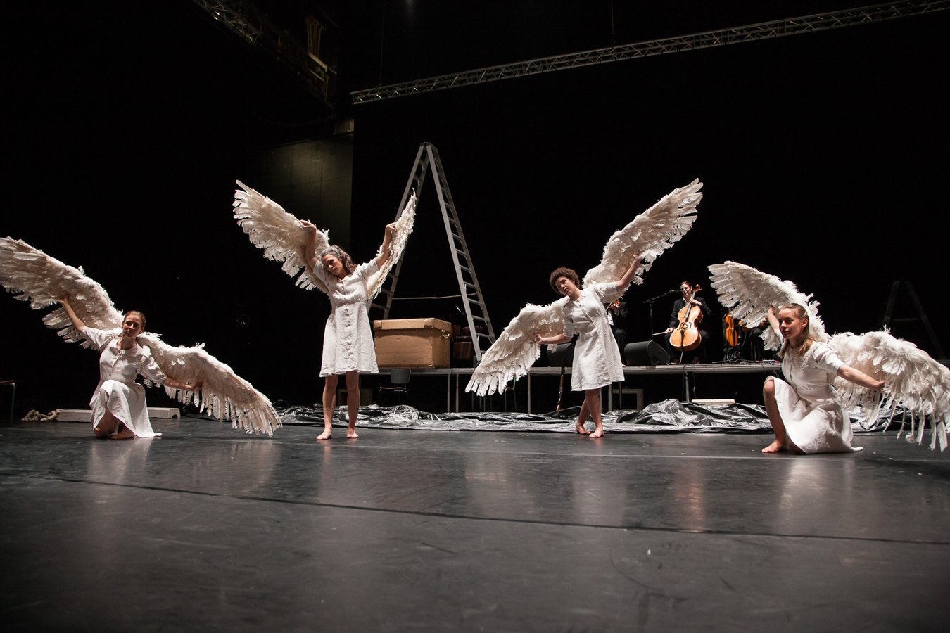 Swan Lake_3_NZ Festival_LR_Matt Grace.jpg